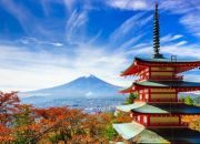 Tokyo: Six-Day Tour per Person Sharing Including Breakfast with Charming Asia Tours