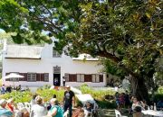 Knorhoek Estate: Gourmet Picnic & Summer Vibes for up to 4 People!