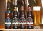 Beer Tasting and Tour with a Draught from R99 for Two at Stellenbrau Brewery