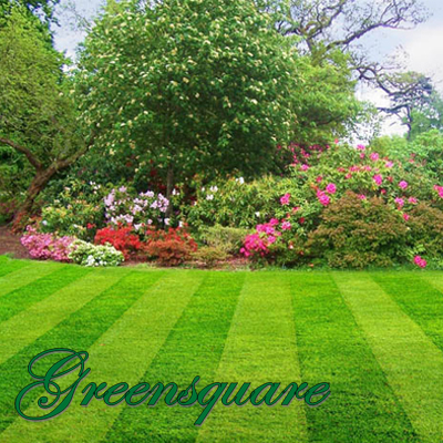 Get your garden into shape this Spring with Greensquare Garden Services. Pay only R150 for 4 garden services once a week for a month!