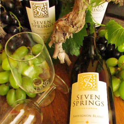 Wine lovers: Receive 6 bottles of quality wine from Seven Springs at R600! Includes free delivery in JHB, PTA and CPT!