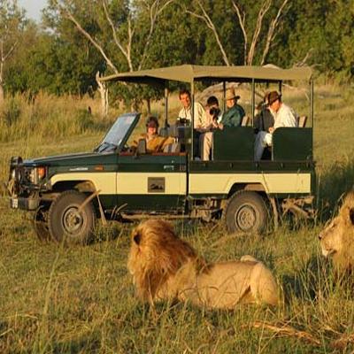 3 Day Mikumi and Udzungwa Safari in Tanzania | R8775