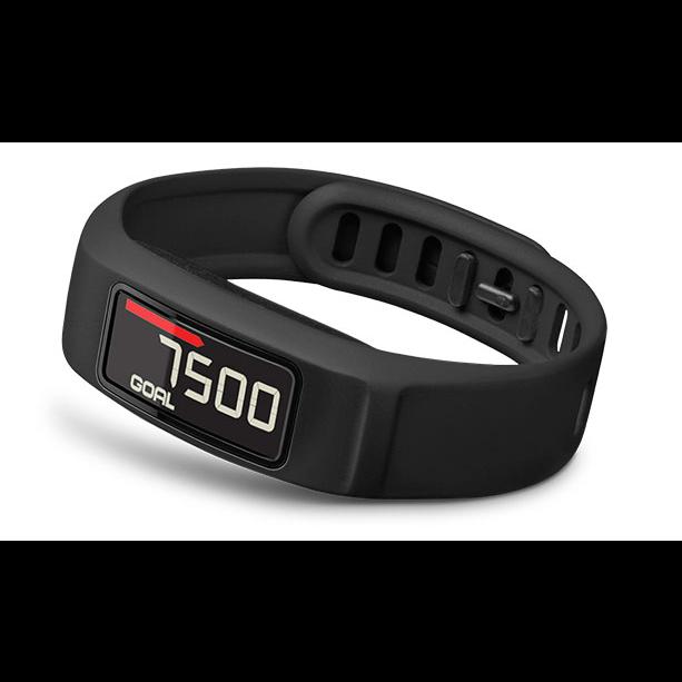 Garmin Vivofit 2 Fitness Watch