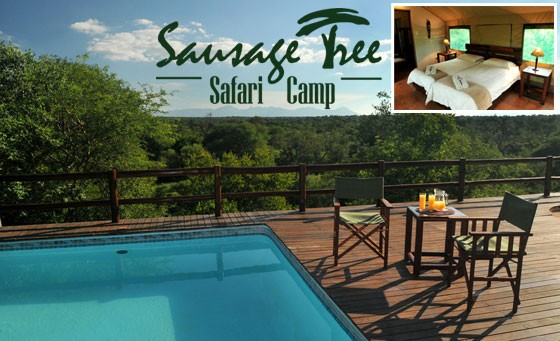 Big Five experience at Sausage Tree Safari Camp: 2 nights for 2 people in a African safari-style tent, incl meals and game drives – only R2960 (value R5920)