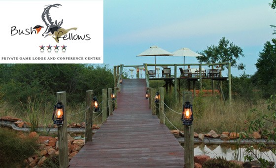 Four-star wildlife experience at Little Eden at Bushfellows: for just R599 enjoy a bush escape for 2, incl breakfast, game drives and conservation tour (value R1500)