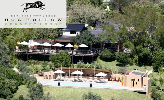 Superb Plettenberg accommodation at the 4-star Hog Hollow Country Lodge: getaway for 2 people, incl breakfast, welcome drink, guided walk/trail and wonderful bonuses – just R899 (value R2890)