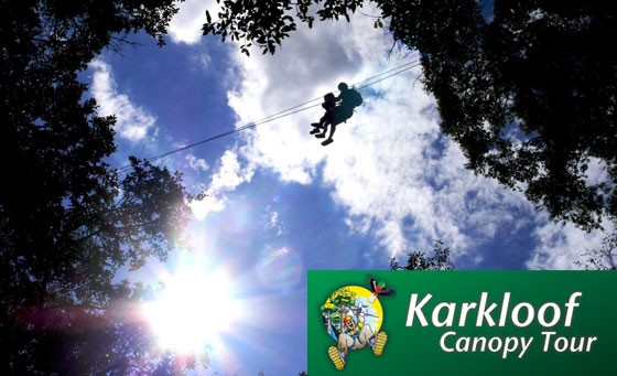Unforgettable, thrilling experience gliding from tree to tree with Karkloof Canopy Tours®: for only R499 enjoy this experience for 2 people, incl refreshments, a light meal and bonus (value R1100)