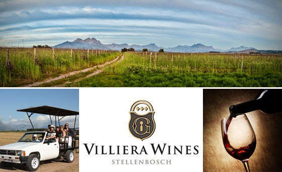 Memorable Winelands experience in Stellenbosch: a 2-hour game drive for 2, incl wine tasting and a self-conducted cellar tour at Villiera Wildlife Sanctuary and Wines – just R149 (value R300)