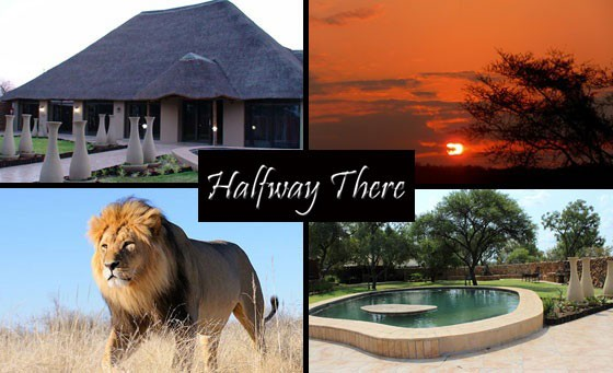 Feel the pulse of Africa at Halfway There in the Dinokeng BIG 5 Game Reserve! Where unspoilt bushveld meets luxury accommodation, an overnight stay awaits you & a partner inc Full English Bfast, a game drive & MORE! 45mins from JHB, only R999