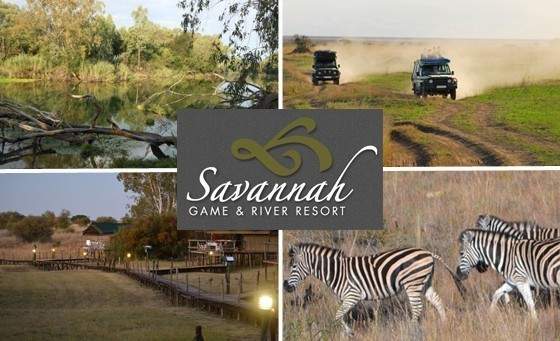 A tranquil bush escape awaits you and your family at Savannah Game and River Resort: Only R999 for a night's stay for two adults & 2 kids incl breakfast, a game drive & more (value R2740), only 1 hr from JHB!