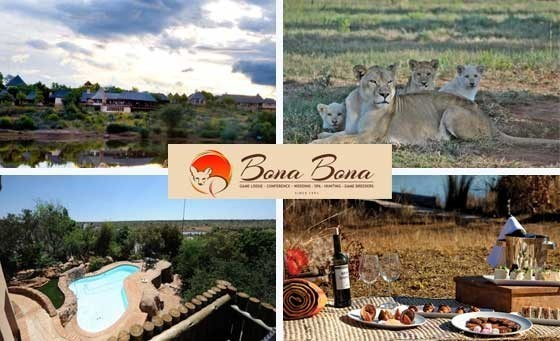 Whisk your love away on an adventure! For only R1599, Spoil your loved one with a TWO-NIGHT stay incl Full English Breakfast, Game drive, Predator Park Tour, Bush picnic & MORE at the 4-STAR, malaria-free Bona Bona Lodge. Just 2.5 hours from JHB