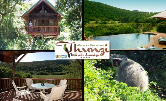 Escape from the humdrum of city life to the 4-star Thunzi Bush Lodge – just R399 for a stay for two people in a self-catering chalet at this stunning lodge. Just 30km from the centre of PE