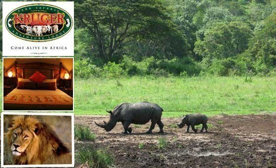 A true Big 5 Bushveld Experience. Save 67% off Kruger Adventure Lodge – only 10mins from Kruger Park. Only R999 for TWO nights for TWO people INCLUDING breakfast and dinner daily + more (value R2990) Daddy's Deal valid for 1 YR