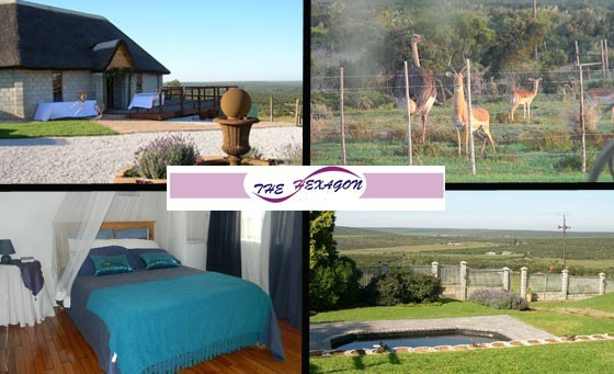 Treat your spirit, mind & body to an extraordinary reviving experience when you and your partner enjoys an overnight stay in a luxury room at The Hexagon Guest House, situated on a private game farm in the scenic Amanzi Valley, only R299 incl bfast & more