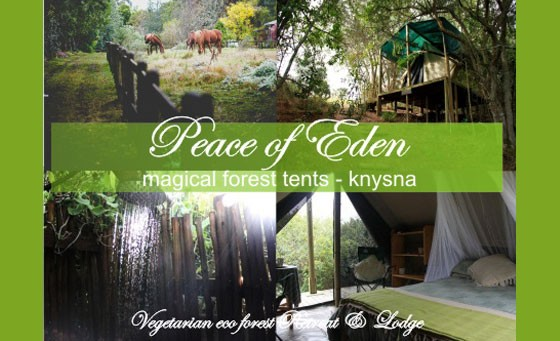 Nature lovers paradise in Knysna! - Experience a magical forest getaway, for only R399 – Enjoy a 2 night stay in a Forest Tent on a timber deck in the forests of enchanting Peace of Eden ~ A vegetarian eco Forest Retreat & Lodge