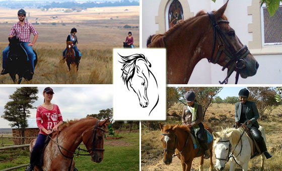 1.5-Hr Horse Trail Outride & More for 2