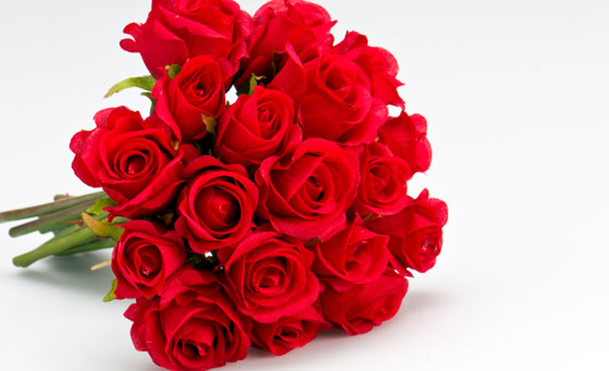 Send 12 Roses OR Bouquet Arrangement to someone special