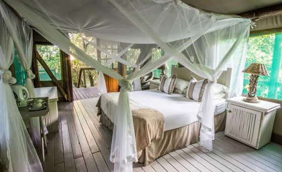 Two-night stay for 2 set in a coastal forest right on the beach!