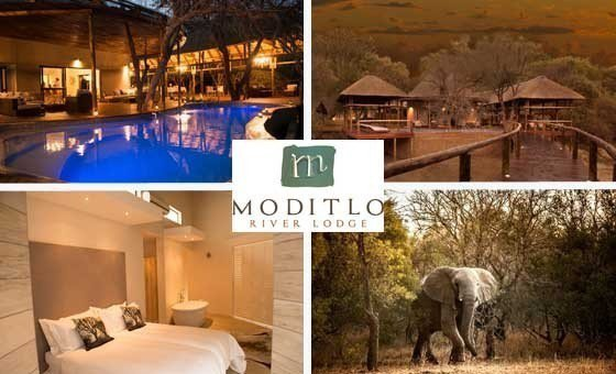 A 2-night stay and game experience at Moditlo River Lodge