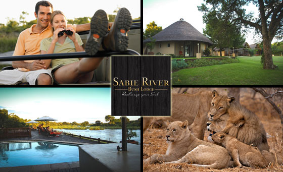 Big 5 stay for 2 for 2 nights including breakfast, game drive & more