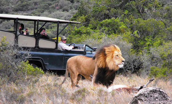 A 2-night stay for 2 including all meals plus a daily Big 5 game drive