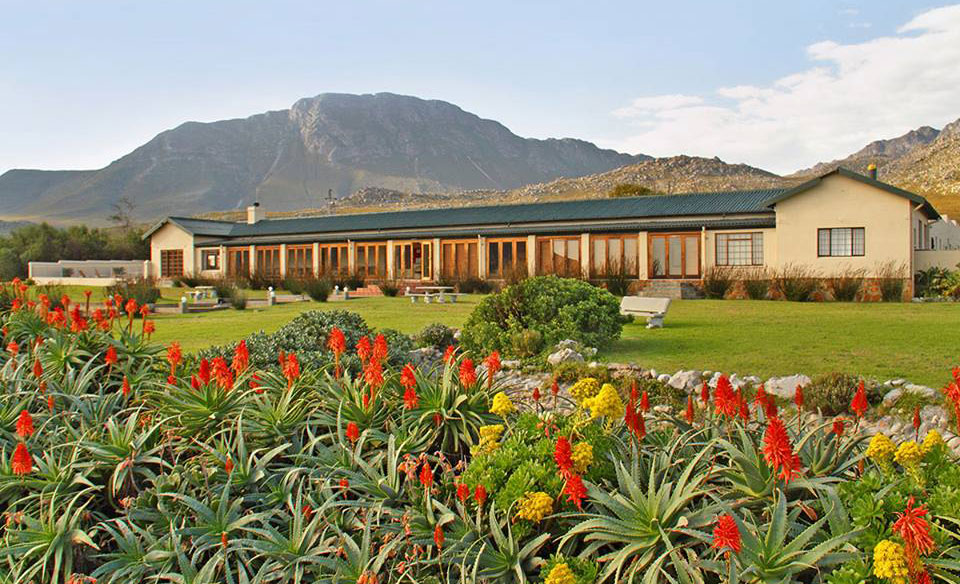 A 2 night Pringle Bay escape for a family of 4 including breakfast