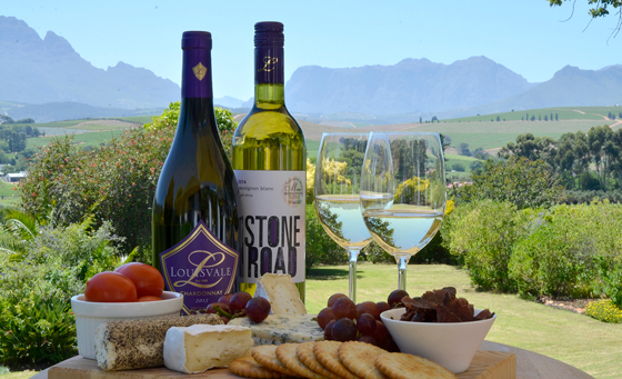 Cheese platter and wine tasting experience for 2 in Stellenbosch