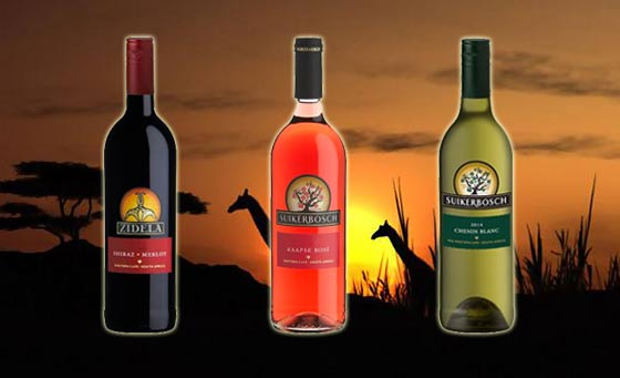 6 bottles of mixed export wines including delivery from Zidela Wines