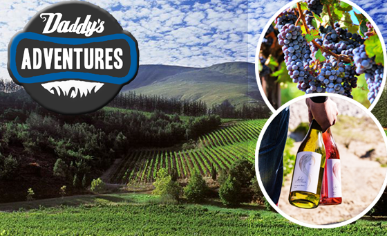 Wine Tour of the Elgin Valleys for 2 people with Daddy's Adventures