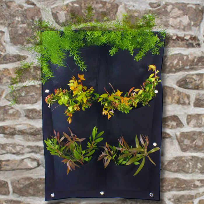 DealZone | 43% discount deal in South Africa - Wall Planter ... on