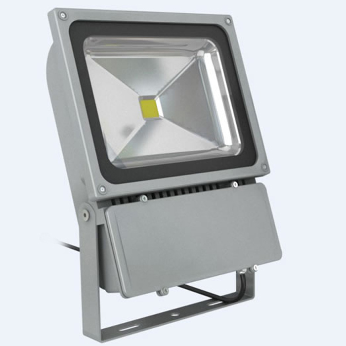 1 X 100w Led Floodlight