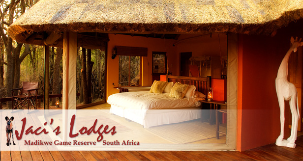Stay at the luxurious Jaci's Lodges (Madikwe Game Reserve) for an incredible R3 700 per couple per night (value R5990)