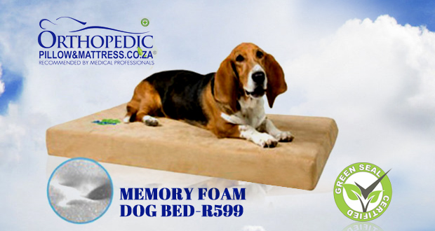 Make your pet comfortable this winter with a memory foam dog bed for only R599 from Orthopedic Pillow and Mattress