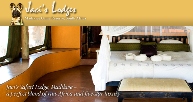 Spring accommodation special at Jaci's Lodges (Madikwe Game Reserve) for an incredible R3 850 per couple (value R5 990)