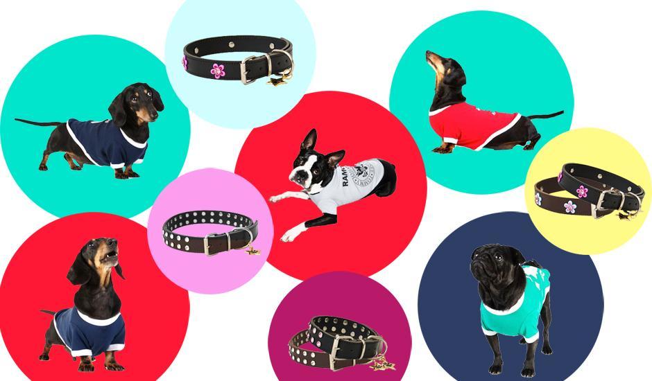 Cheeky Doggy Tees & Designer Diamante Collars