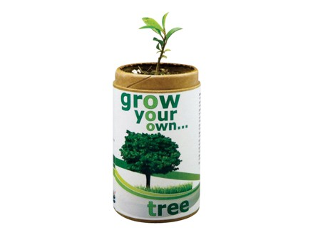 Pay R99 for the Great New Eco Product, Grow Your Own Tree Or Herb, valued at R200 (51% off), OR Pay R175 for 2, valued at R400 (57% off) from DealClick Collection. Nationwide Delivery Included