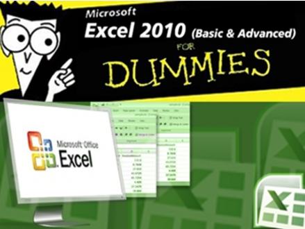 Pay R515 for an Excel 2010 Basic & advanced for Dummies Online Course from Blue Mountain Training (worth R3195)