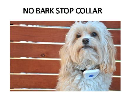 Pay R185 for a Dog Bark Control Collar, including National Delivery (worth R299)