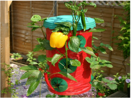 Pay R199 for 2 x Strawberry Planters Including National Delivery valued at R499