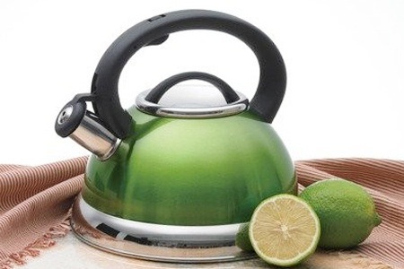 Energy Saving Whistling Induction Kettle for R249.99 Including Delivery (72% Off)