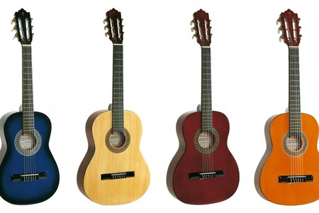 Choice of Palmer Classical Guitars from R579 Including Delivery (Up to 43% off)