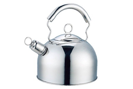 Prima One & Only Stainless Steel Induction Kettle for R199 Including Delivery (33% Off)