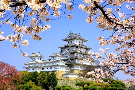 Japan: Seven-Day Tour to Japan Per Person Sharing with Charming Asia Tours