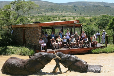 Eastern Cape: Stay for Two, Including Breakfast at Addo Elephant Back Safaris