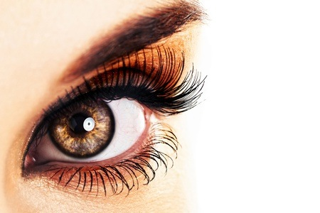 Eyelash Extensions and a Two-Week Fill from French Clinic