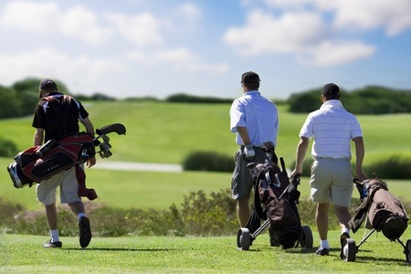 Four-ball Round of Golf with Two Carts For R1 190 at Eye of Africa Golf & Residential Estate (55 % Off)