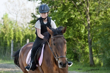 Horse Riding Lessons From R100 at Al-Baraka Equestrian (Up To 60% Off)