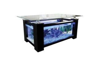 Dealzone 54 Discount Deal In South Africa Elite Coffee Table Fish Tank For R2 999 Including