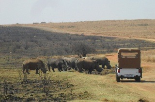 Breakfast and a Game Drive from R188 with Rietvlei Coffee Shop (Up to 55% Off)