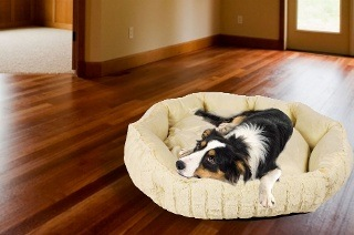 Fine Living Dog Bed from R399 Including Delivery (33% Off)